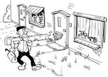 cartoon krant